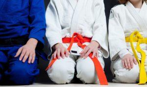 Montfermeil sport judo